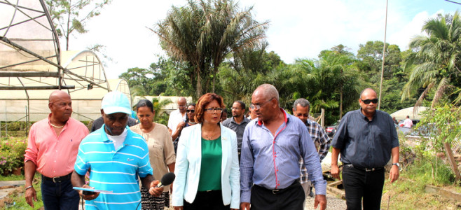 Premier centre de quarantaine privé de Guyane