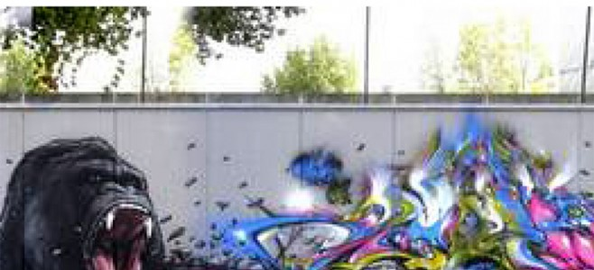 "Projet de ""Street Art"" au Skatepark de Mirza"