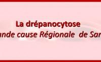 Dîner Caritatif et Solidaire pour la Drépanocytose