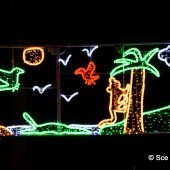 Inauguration des illuminations de Noël 2017