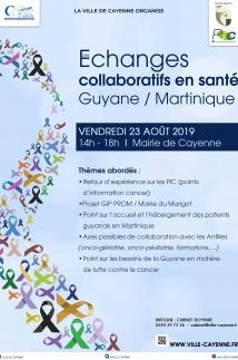 Echanges collaboratifs en santé