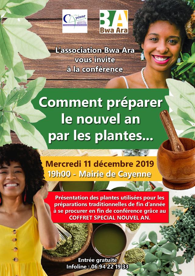 Comment préparer le nouvel an par les plantes
