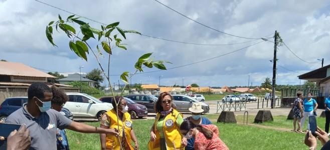 Journée internationale de l'environnement